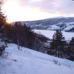 Happy New Year from winter wonderland